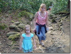 Smoky Mountains 013