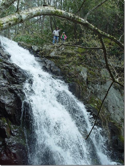 Spruce Flat Falls and Cades Cove 031