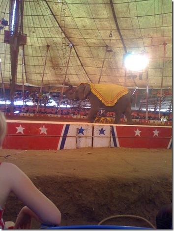Circus 025