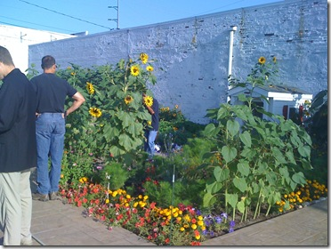 Beach and Homeless Center Garden 037
