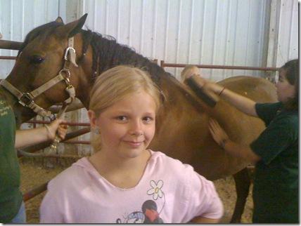 Horses 039